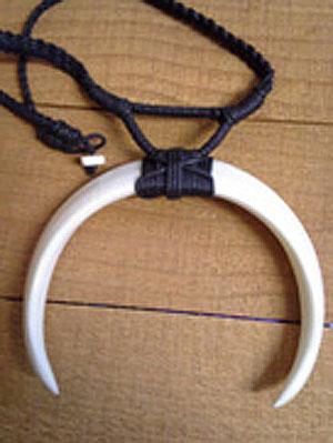 Double Sided Tusk Necklace Infoimagination Web 2 0